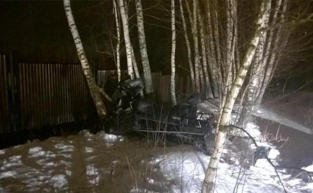 В Малахово 10-летняя девочка разбилась на снегоходе