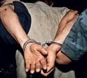 В Ясногорском районе мигрант изнасиловал 80-летнюю женщину