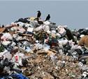 В Тульской области незаконно выбрасывают биологические отходы