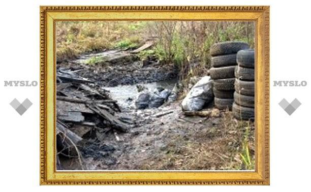 Берега Упы очистят от мусора
