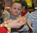 Тульский экзотариум приглашает детей на развивающие занятия
