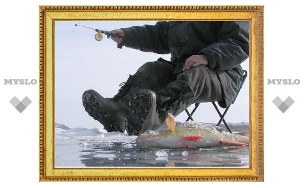 В Тульской области мужчина провалился под лед и утонул