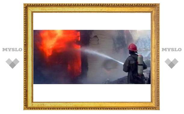 Под Тулой трое детей сгорели в доме