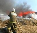 В Ефремовском районе горящие сараи тушили два пожарных расчета