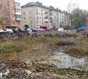 Во дворе дома на Красноармейском проспекте образовался пруд с уточками