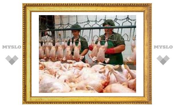 В Туле запретили замораживать курятину?
