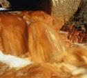 В Туле канализация сливается в Упу