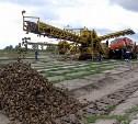 Бывшего гендиректора Товарковского сахарного завода осудили за невыплату зарплаты сотрудникам