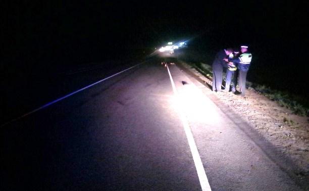 В Веневском районе водитель насмерть сбил пешехода и скрылся с места ДТП
