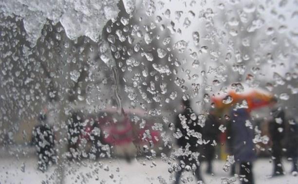Весна начнётся в Туле cо снегопадов и дождей