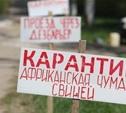 Из-за африканской чумы свиней Беларусь запретила ввоз тульской свинины