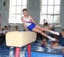 Ефремовские гимнасты достойно выступили на родной земле