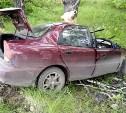 За прошедшие выходные на дорогах Тульской области погибли пять человек