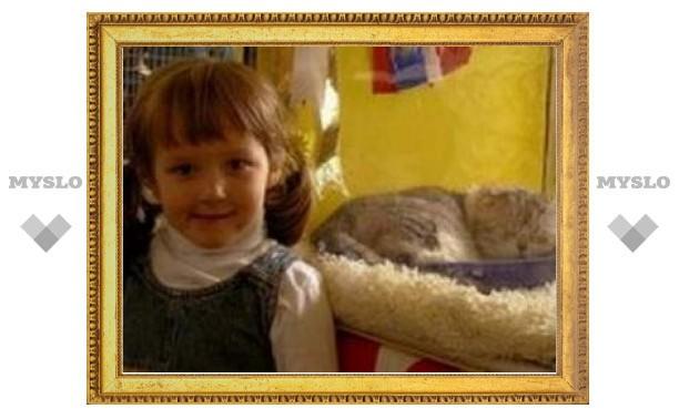 В Туле пройдет выставка кошек