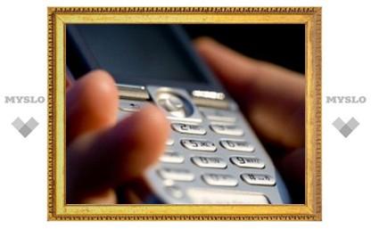 В Туле осудили интернет-мошенника