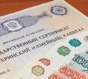 Россияне начали обналичивать материнский капитал