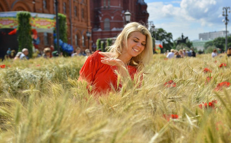 К стенам Московского кремля привезли три гектара тульского поля