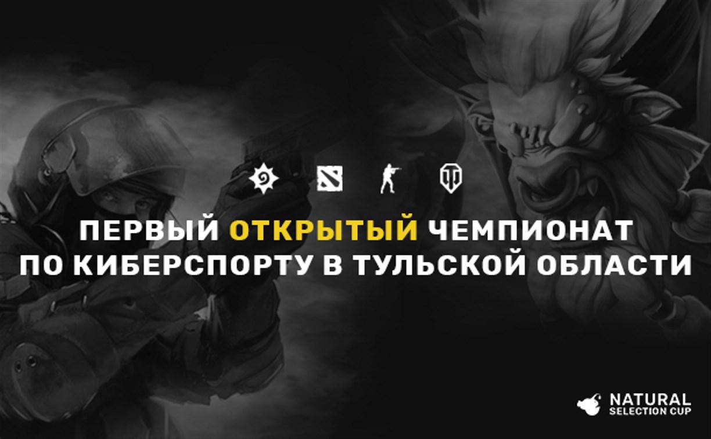 На чемпионат Тульской области по киберспорту зарегистрировались более 40 команд