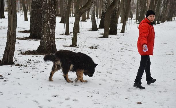 В Центральном парке прошёл рейд по выявлению нарушений выгула собак