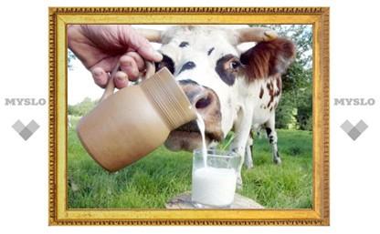 Китайские генетики очеловечили коровье молоко