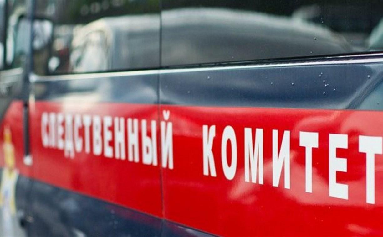 В Тульской области двое подростков забили насмерть 63-летнюю женщину