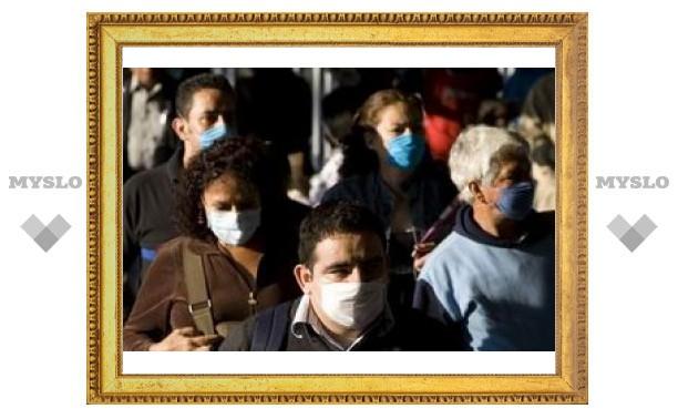 """В России зарегистрирована первая смерть от """"свиного гриппа"""""""