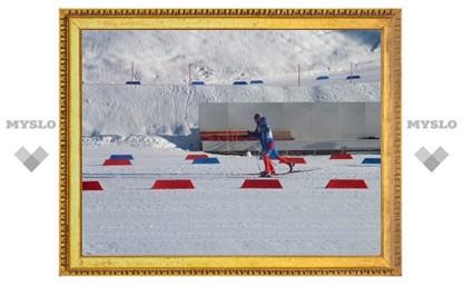 Тульский лыжник завоевал две медали на чемпионате страны (спорт слепых)