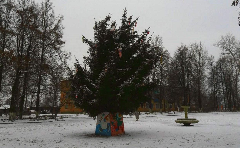 Жители поселка Бородинский жалуются на «позорную» ёлку