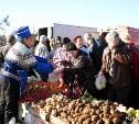 В «Ликёрке» откроется сельскохозяйственная ярмарка выходного дня