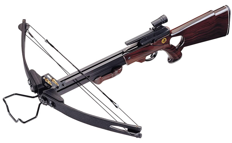 Туляк украл из тира арбалет и пневматическую винтовку