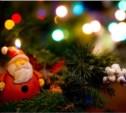 Туляков приглашают принять участие в новогодней фотовыставке