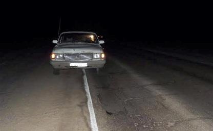 Ночью в Тульской области под колесами машин погибли три человека