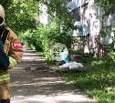На ул. Макаренко в Туле из окна выпал мужчина