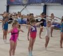 В Туле прошел турнир по спортивной гимнастике на призы известных спортсменок