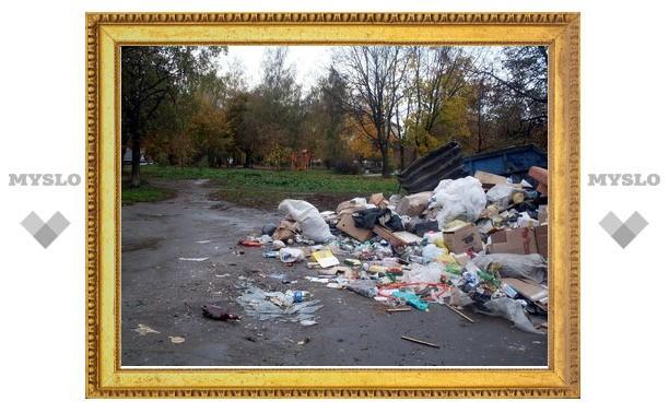 В Туле улица Баженова завалена мусором