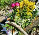 Убийство школьницы в Тульской области: что известно на данный момент