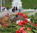 Туляков приглашают поучаствовать в акции «Память наших сердец»