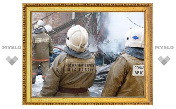 На пожаре в Тульской области погиб человек