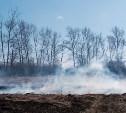 За неделю тульские пожарные тушили сухую траву более 600 раз
