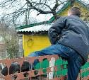 Тульский бомж украл с дачи москвички одежду и инструменты