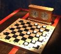 Юных туляков приглашают на онлайн-турнир по шашкам