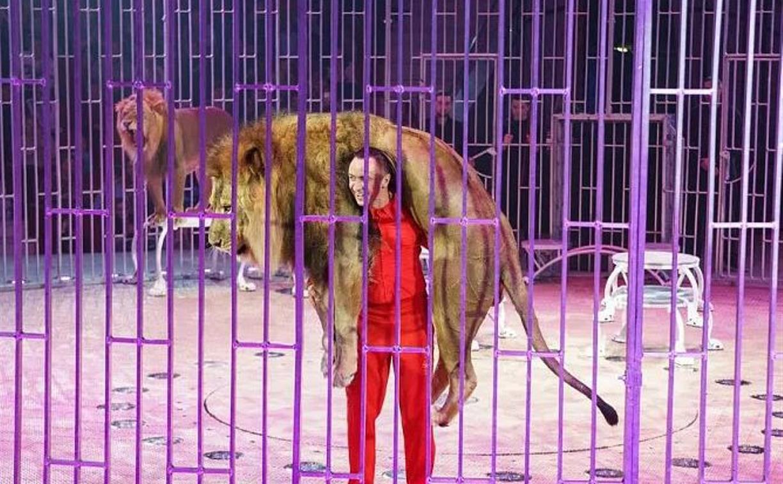 В Тульском цирке прошла благотворительная акция для семей медработников, борющихся с COVID-19
