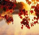 Бабье лето начнется только в октябре