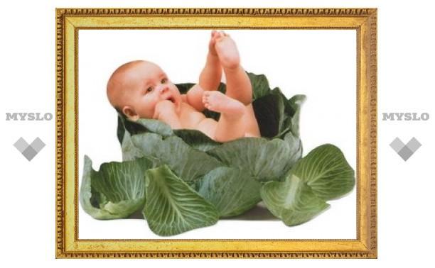 В Тульской области за апрель 2012 года родилось более тысячи детей