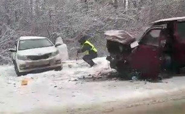 На трассе Тула-Новомосковск произошло ДТП: двое пострадавших