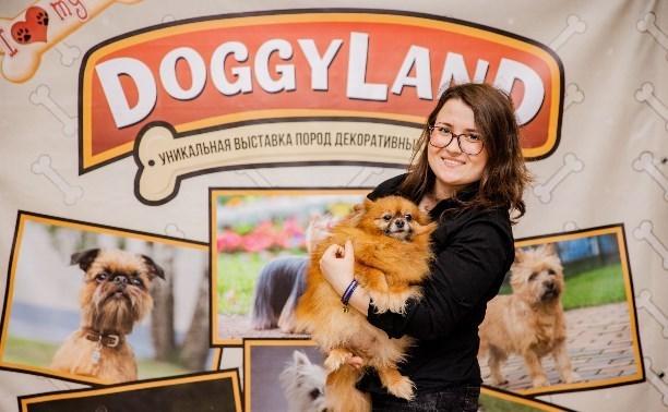 В ТРЦ «РИО» откроется уникальная выставка собак
