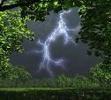 На Тульскую область надвигаются дожди, грозы и порывистый ветер