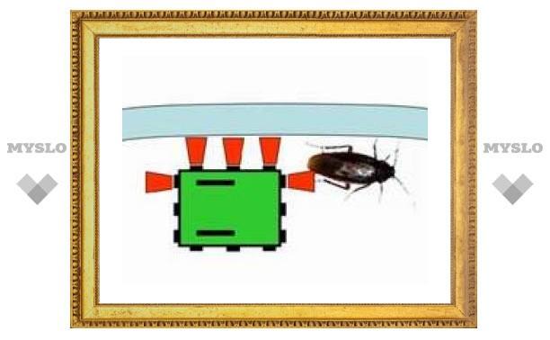 Появилась первая модель робота-таракана
