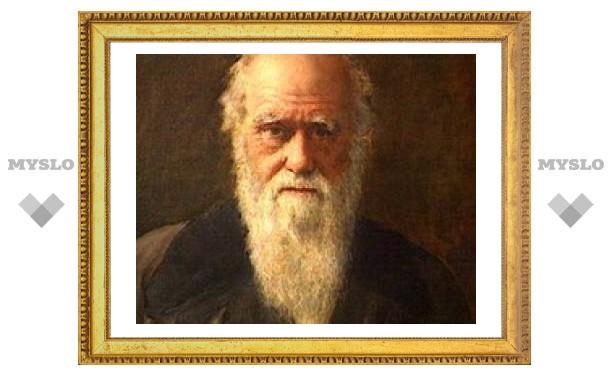 Церковь попросят извиниться за критику Дарвина