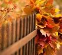 Погода в Туле 6 сентября: тепло, сухо, умеренный ветер